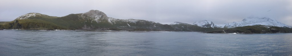 bird_island_panorama